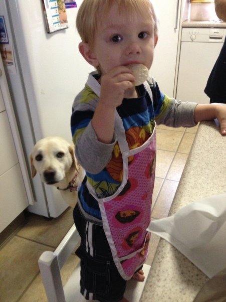 Dog and Son Baking